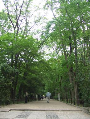 Kyoto210503_0302